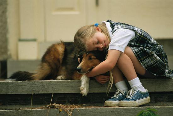 Воспитание сострадания